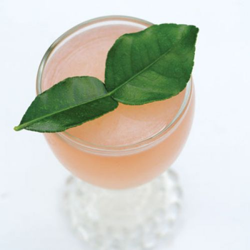 Gibbons Cocktail