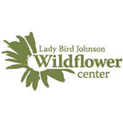 lbj wildflower new